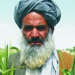 Reinvigorating Pakistan's Rural Development