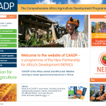 The Comprehensive Africa Agriculture Development Programme: Long-Term Strategic Analysis for Improved Growth and Poverty Reduction