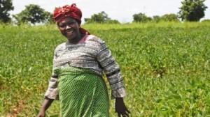 Image courtesy USAID