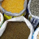 Ensuring Healthy Pulses for People and the Planet
