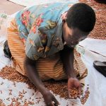 Tracking Hunger and Strengthening Resilience: An IFPRI-Germany Partnership towards Sustainable Development