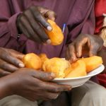 Transform Nutrition & LANSA: Improving Nutrition with Regional Alliances